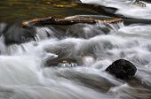 Autumn River With Stones