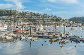 image of dartmouth  - Dartmouth marina on the south coast of Devon - JPG