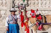 CHIVAY, PERU - JULY 29: Llama with peruvian flags and woman the peruvian Andes at Arequipa Peru on j