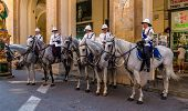 Malta Mounted Police