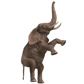 picture of circus tent  - giant elephant - JPG