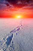 snow-path in steppe on sunset background