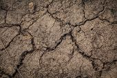 stock photo of heatwave  - close up of the dry soil crack - JPG