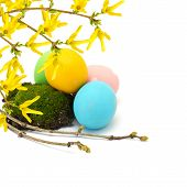 Easter Eggs Isolated On White