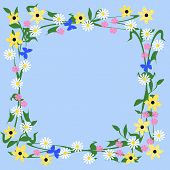 flowers and butterflies frame
