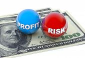 Profit And Risk