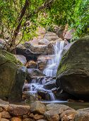 Evergreen Forest Waterfall