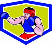 Amateur Boxer Boxing Shield Cartoon