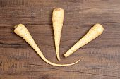 foto of parsnips  - Three beige parsnips on a brown table - JPG