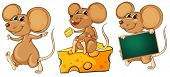 Illustration of the three playful mice on a white background