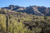 View of Catalina State Park