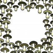 Green gray edible mushrooms autumn seasonal frame on white