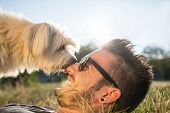picture of cute dog  - Dog and his owner  - JPG