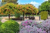 Park Ramat Hanadiv, Israel