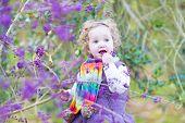 Beautiful Little Toddler Girl Picking Purple Berries In An Autumn Park