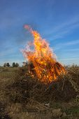 Fire Of Dried Weeds