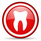 tooth web icon