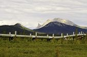 Scenic pipeline with mountains