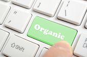 Pressing green organic key on keyboard