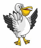 Pelican Cartoon Illustration