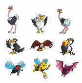 Flying Animal Collection