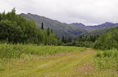 Country road Alaska