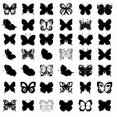 Great Collection Of Butterflies Silhouettes