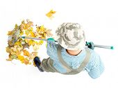 Pile of dead fall leaves being swept by female gardener using fan rake, shot from above on white background