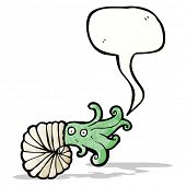 nautilus squid cartoon