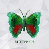 Vector butterfly green geometric.