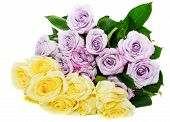 Yellow And Violet Bouquet Roses
