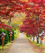 Stairway To Chureito Pagoda In Autumn, Fujiyoshida, Japan