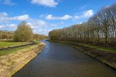 Trees along a canal under sunny sky in winter