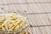 image of soybean sprouts  - Portion of preserved Soy Sprouts  - JPG