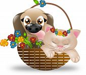Puppy And Kitten In Basket With Flowers
