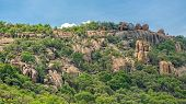 picture of vegetation  - Lush green vegetation on the rocky hills at the outskirts of Gaborone Botswana  - JPG