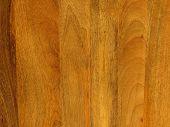 Mango wood texture background