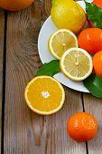 Citrus Fruits - Orange, Lemon, Tangerine, Grapefruit