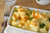 Cauliflower Cheese Meal Served