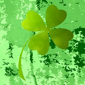 picture of clover  - Four - JPG