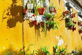Traditional Lisbon Wall