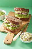 stock photo of alfalfa  - healthy rye sandwich with avocado cucumber alfalfa sprouts - JPG
