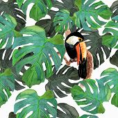 pic of toucan  - Tropical seamless background - JPG