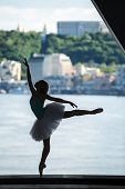 image of tutu  - Silhouette of graceful ballerina in white tutu on a background of green slopes of the Dnieper Kiev - JPG