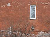 Window In An Old Redpainted Wall & Bush.