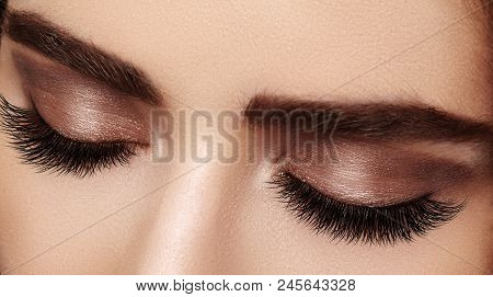 poster of Beautiful Macro Shot Of Female Eye With Extreme Long Eyelashes And Black Liner Makeup. Perfect Shape