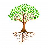 Tree Made Of Green Leaves With Branches And Roots. Nature Concept, Environment Help Or Earth Care. E poster