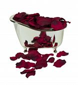 foto of clawfoot  - Silver claw footed bathtub filled with rose petals  - JPG