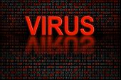 Software code or digital data infected by a virus