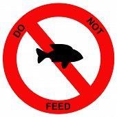 Forbidden fish